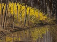 "Necla Balasaygun, ""Forsythias by the Creek"", oil, $450"