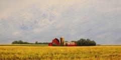 "Ceal Swift, ""Red Barn 2"", acrylic, $1,200"