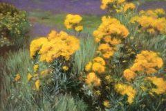 Bevington_Phyllis_WildflowersFrance_oil_11x14_500