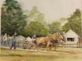 Simler Susan Thompson Horsepower