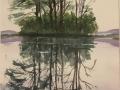 Tracy Kathleen Reflection