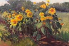 jonesjacquelineseptembersunflowers