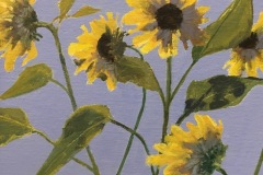mcphersonjoanmonhegansunflowers