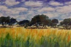 PiersonMD_AnneBingham_Grasslands_watercolor_14x17_350