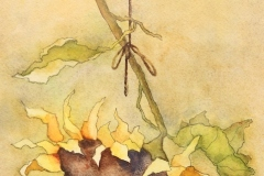 "Barbara Maiser, ""Summer's End"", watercolor, $700"