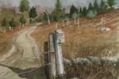 "Bob Perkowski, ""Tree Farm Nesting Box"", watercolor, $950"