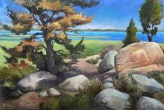 "Skelskey-Lorraine Skelskey-Chapin, ""Spiritual Journey (Meig's Point)"", oil, 26x36, $1,900"