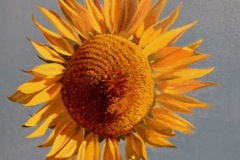 ChandlerDiane_Helianthus_oil_110_8x8