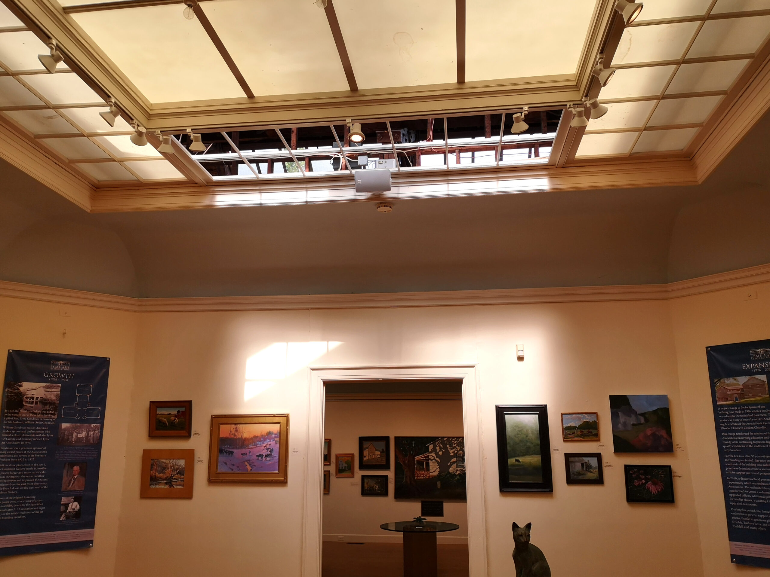 View of Skylights and Laylights